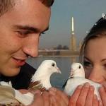фото свадебных голубей, свадебные голуби фото