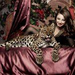 Леопард для Вашей фотосессии