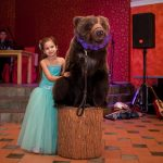 Живой медведь на фотосъемку