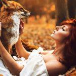 Аренда лисы для фотосессии
