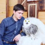 Аренда полярной совы для праздника