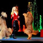 Цирковое шоу собак-гигантов