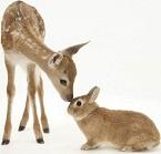 Аренда животных для фотосессии