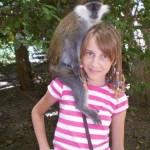 видео дрессированная обезьяна