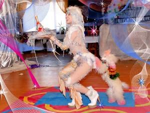 Дрессированные собачки в цирке, заказать дрессированных собачек