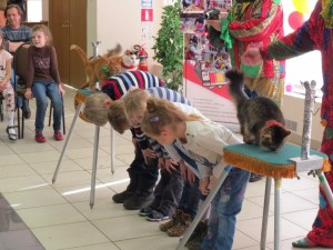 Дрессированные кошки на праздник