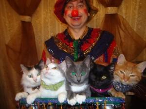 Дрессировщик с кошками