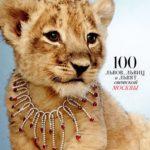 Живой львенок на фотосессии