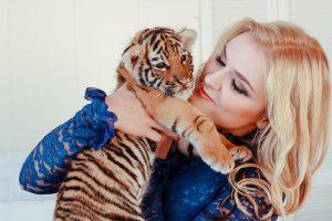Арендовать тигренка