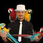 Аренда попугая на праздник