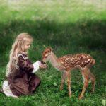 Выездной контактный зоопарк с Бемби
