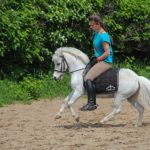 Белый пони для катания на выезд